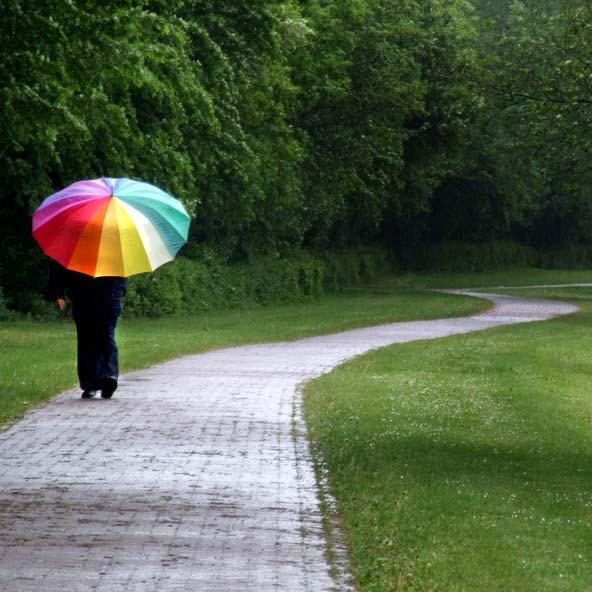 梅雨の時期でも・・・・