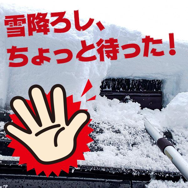 雪降ろし、ちょっと待った!